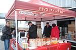 Vepřové hody v Jičíně - maso, pivo a muzika.