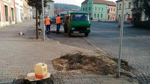 V Hořicích začali s kácením stromů na náměstí Jiřího z Poděbrad.Foto: Archív města