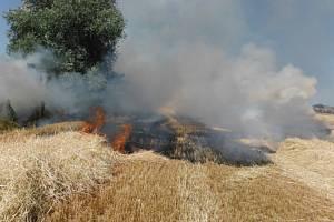 Panující sucho nahrává požárům. Ten u Chomutic naštěstí hasiči zlikvidovali dříve, než napáchal větší škody.
