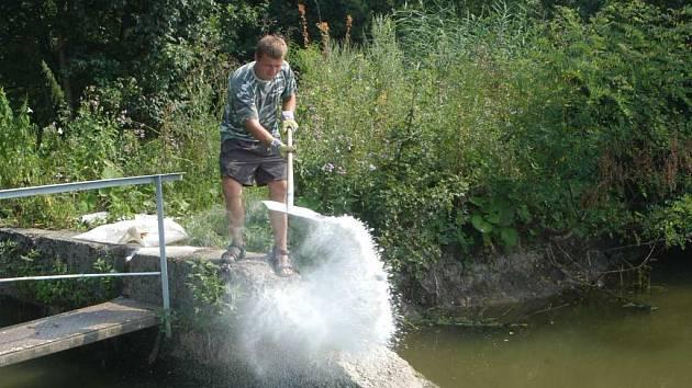 Rybář z kopidlenského střediska při krmení šupináčů.