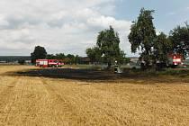 K požáru pole vyjeli hasiči i zemědělci.