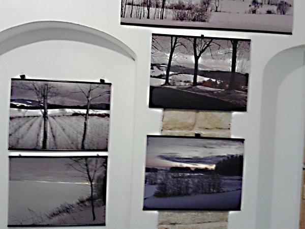 Výstava fotografií Petra Volfa.