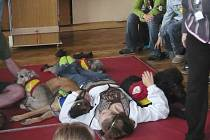 Canisterapie - léčba kontaktem se psy.