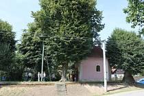 Z obce Soběraz.