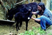 Stanislav Penc na své farmě.