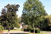 Jediná obec Kbelnice na Jičínsku nesestavila kandidátku.