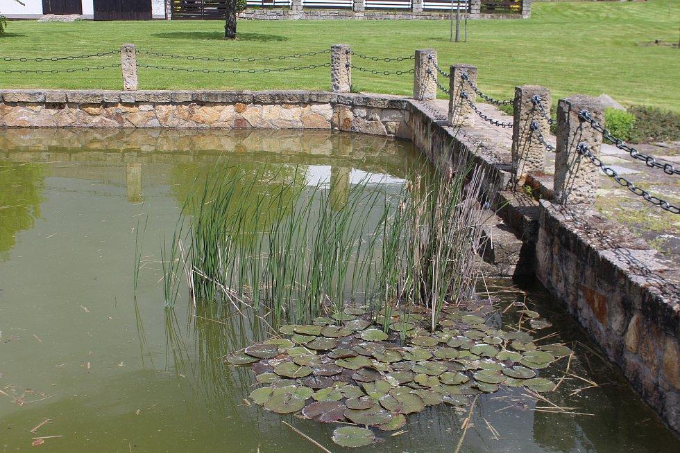 Ve vodní nádrži chovají místní kapry na gril.