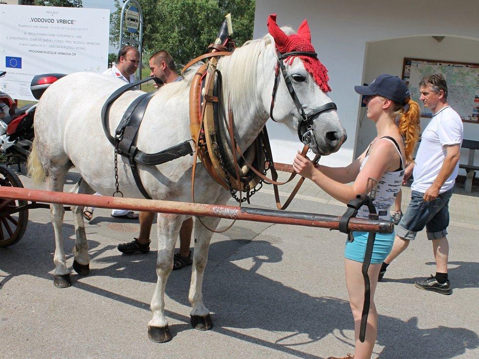 Ze soutěže koňských stříkaček ve Vrbici.