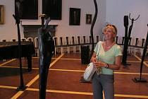 Výstava děl Petra Hebera v jičínském Porotním sále.