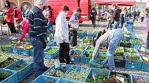 Především nákup květin přitáhl co centra Jičína nakupující. Vlastně letos poprvé si tu mohli nakoupit sadbu květin i zeleniny. K dostání byly i štíty a roušky, čerstvá zelenina a ovoce.
