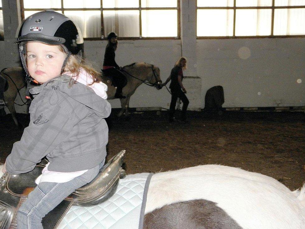 Z návštěvy diabetiků na koňské farmě.