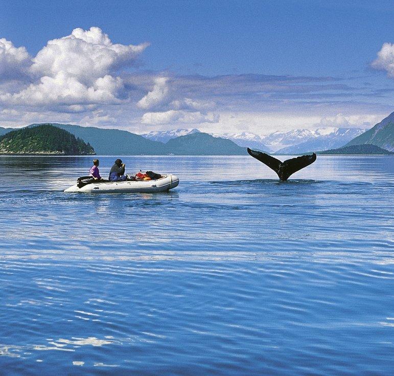 Šimánkovo putování Aljaškou a Pacifikem.