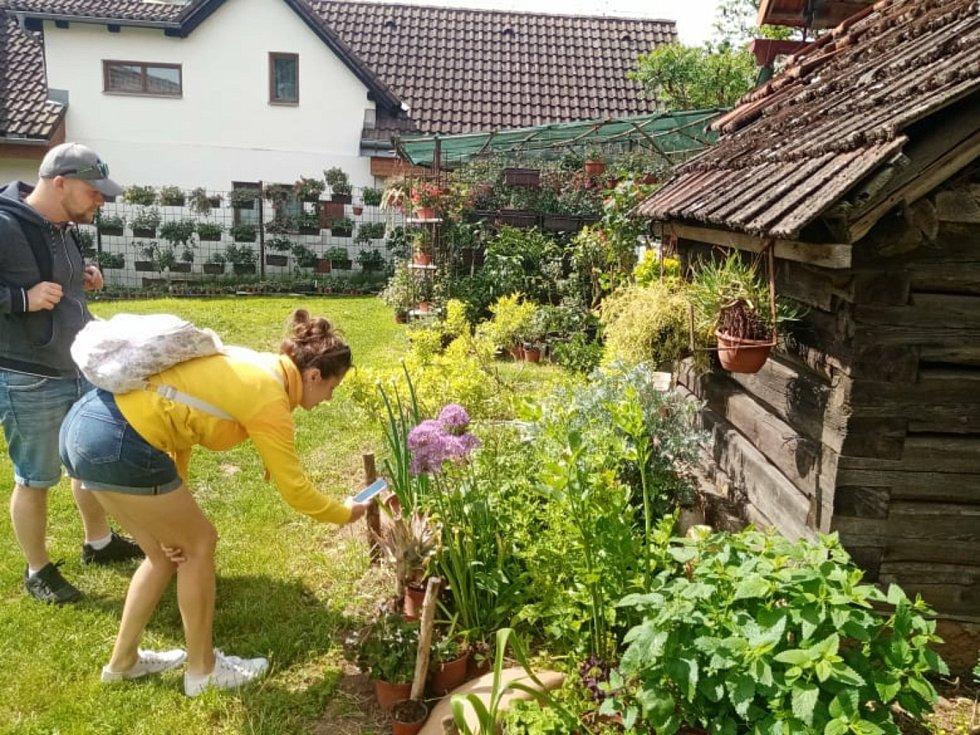 Manželé Suchardovi otevřeli veřejnosti svou zahradu v Újezdci u Syřenova.