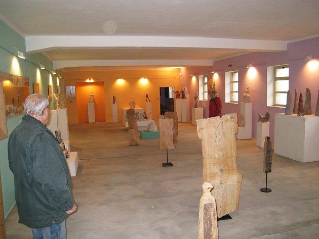 Výstava děl Inny Kolomijec.