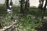 Následky noční bouřky likvidovali na mnoha místech v kraji hasiči. Komunikaci  u Nového Bydžova zablokoval spadlý strom.