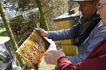 Včelaři při jarní prohlídce včelnice.