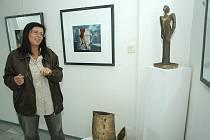 Foto z výstavy Renaty Greinerové a Jarmily Krečmanové.