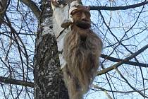 Les zakletých duší je místo, kde jsou dřevěné hlavy v tělech stromů tichou vzpomínkou na osudy lidí, kteří se zde kdysi ztratili a stali se součástí tohoto lesa.