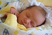 Adina Housová dělá svým rodičům Martině a Oldřichovi Housovým radost od 2. října, kdy se narodila s porodní mírou 48 cm a váhou 2,98 kg. Doma v Doubravě se na sestřičku těší tříletá Elena.