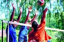 VRCHOLÍ PŘÍPRAVY na 59. volejbalovou Dřevěnici. Ta se uskuteční v tradičním termínu 4., 5., 11. a 12. srpna. Vloni si zde zahrálo 272 družstev.