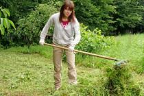 Jukiko z Japonska shrabává trávu u fary na Hradíšťku.