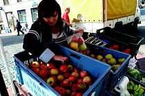 Jablka jsou vhodným doplňkem stravy.