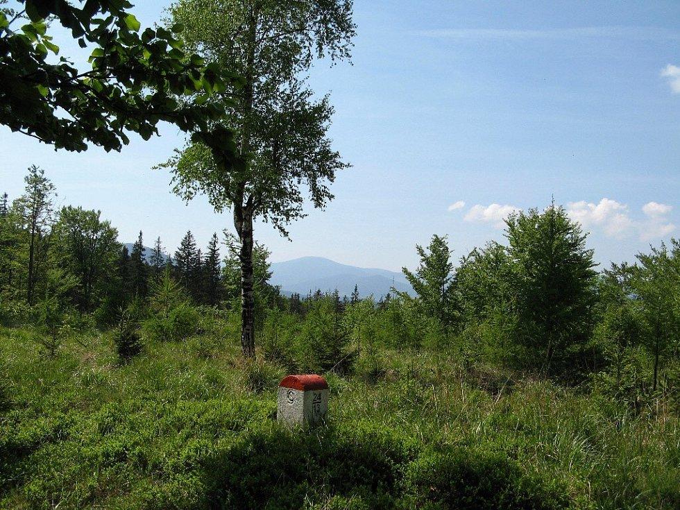 Králický Sněžník, pohled z Rychlebských hor.