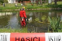 Taktické cvičení hasičů ve Mžanech.