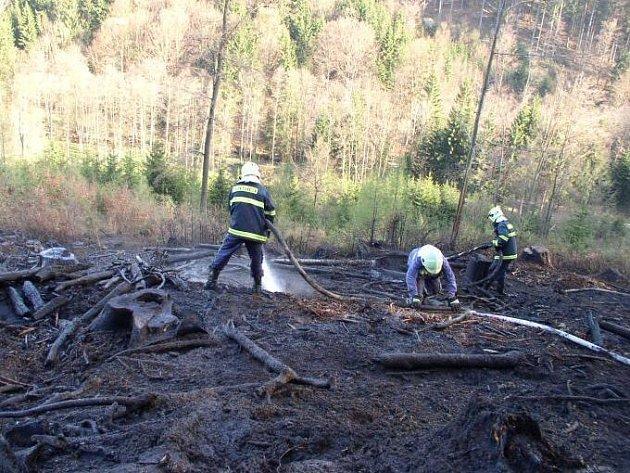 Lesní požár v Julinčině údolí u Rokytnice.