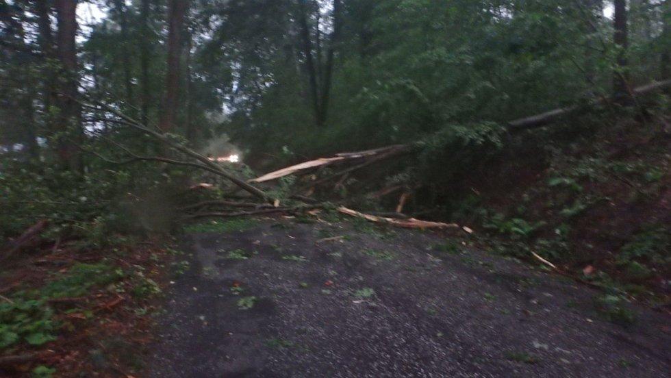 Následky noční bouřky likvidovali na mnoha místech v kraji hasiči. Poryv větru nevydržely ani stromy u Zálesí.