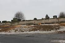 Vykácené stromy u jičínské hřbitovní zdi.