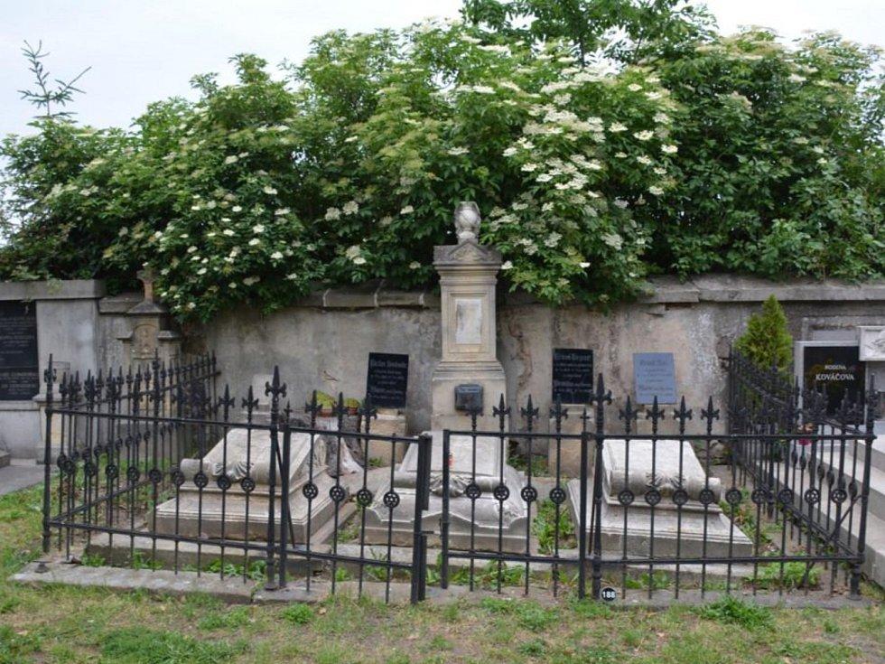 Město za opravu pomníku Františka Lepaře zaplatí 400 tisíc korun.