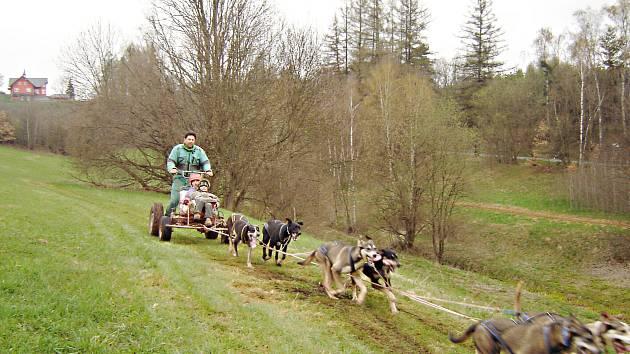 Z jízd se psími spřeženími v Horkách.