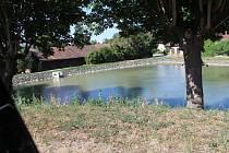 Vršce a revitalizace rybníku.
