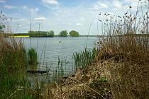 Mlýnecký rybník.