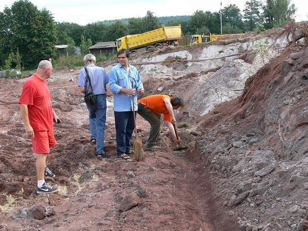 Geologové stále pátrají na novopackém staveništi po zkamenělých stromech.