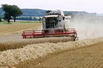 Kombajny na polích sklízí poslední tuny obilí.