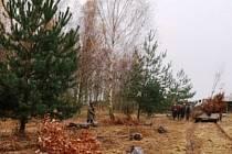 Dolní Lochov se proti prachu a hluku obrnil zelení