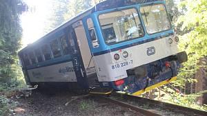 Vlak vykolejil po nárazu do stromu