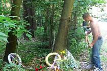 V Hořicích došlo při závodě historických motocyklů a sajdkár Tourist Trophy v neděli 22. května 2008 po 13. hodině k tragické nehodě. Po nárazu do stromu zůstali na místě mrtví 57letý Ilja Zachoval ze Šumperka s dcerou Marií.