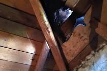 Hasiči našli v domě už jen ohořelá prkna u komína.