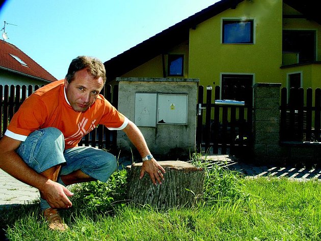 Bělohradský starosta Pavel Šubr upozrňuje na vrty kolem pařezu lípy.
