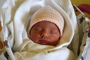 JOHANKA CHLUMSKÁ se narodila 4. března s porodní mírou 45 cm a váhou 2,44 kg. Radost dělá rodičům Evě a Janu Chlumským  a bráškům Janu a Jakubovi. Spokojená rodina žije v obci  Brada Rybníček.