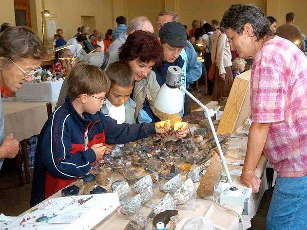 V hotelu Centrál v Nové Pace se sešli sběratelé nerostů a zkamenělin.