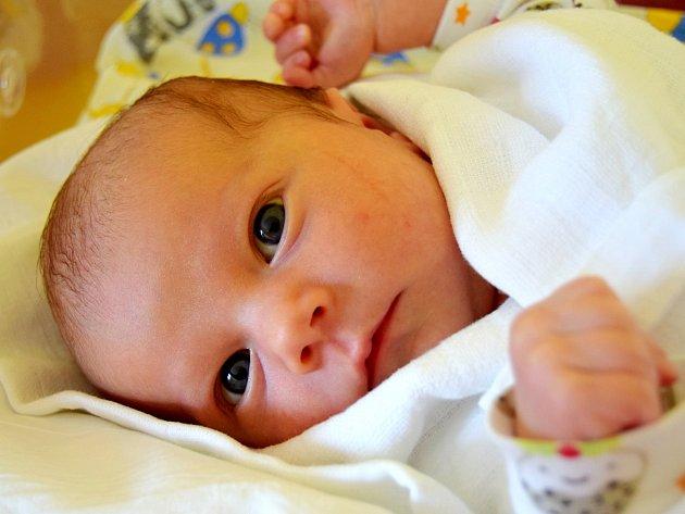 ANEŽKA TVRDÍKOVÁ se na svět usmívá od 5. srpna, kdy se narodila s porodní mírou 50 cm a váhou 3,60 kg rodičům Šárce a Pavlovi Tvrdíkovým. Rodina žije v Libáni, kde se na Anežku těší sestřička Štěpánka.