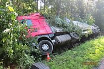 Kamion se zastavil o vzrostlé stromy.