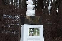 Na ukradenou bustu Foerstera byla vyhlášena sbírka.