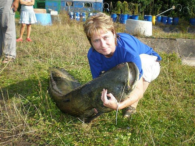 Lenka Bulíčková ulovila ve vodách Dvoreckého rybníku kapitálního sumce.
