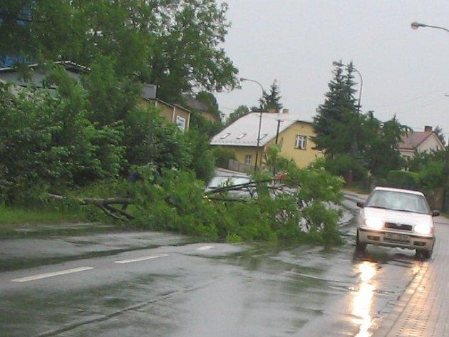 Silný vítr vyvrátil strom, který ve Valdicích spadl přes vozovku.