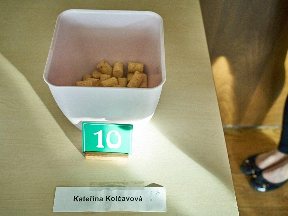 Ze soutěže Česko zpívá.
